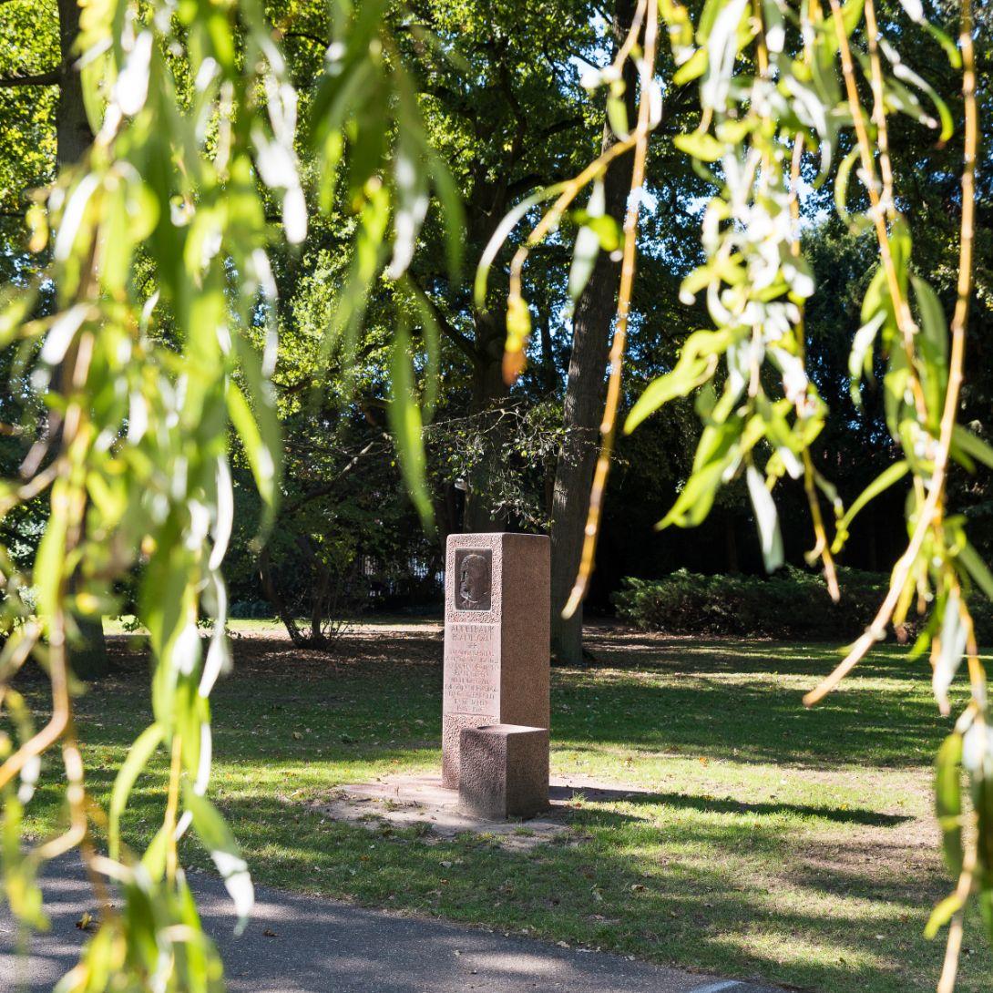Anne Frankplantsoen Eindhoven